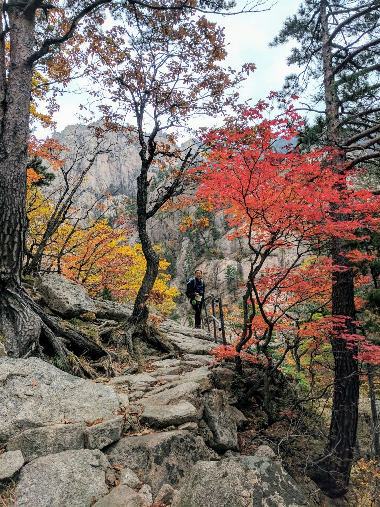 Autumn colours, Seoraksan National Park, Gangwon Province, South Korea