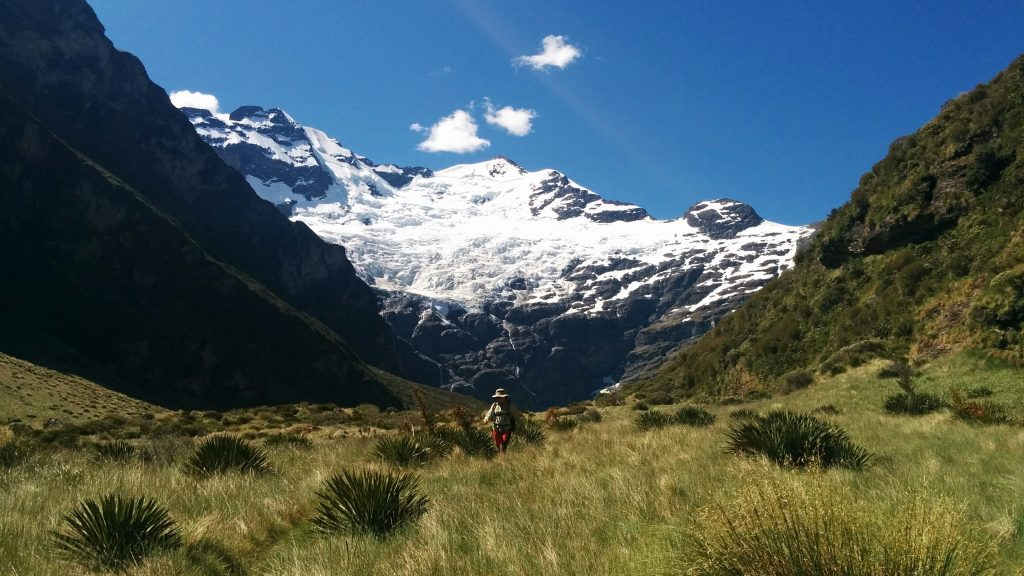 Earnslaw Glacier, Mt Aspiring National Park, NZ