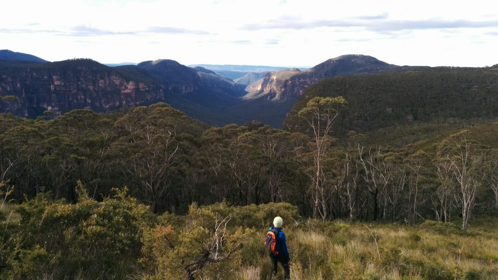 The Grose Valley viewed from Lockley's Pylon Track, Blue Mountains National Park