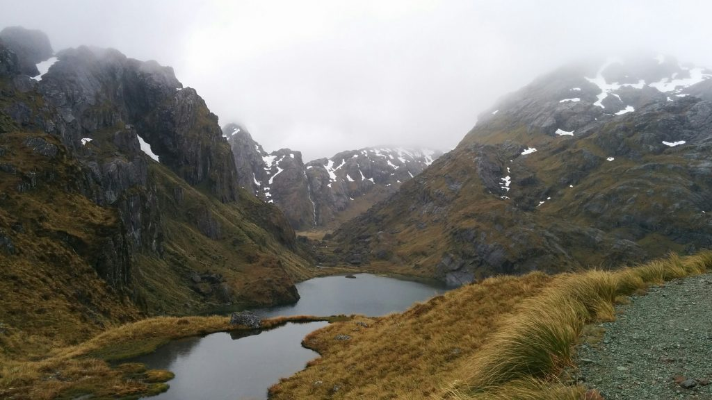 Near Harris Saddle on the Routeburn Track, Mt Aspiring National Park