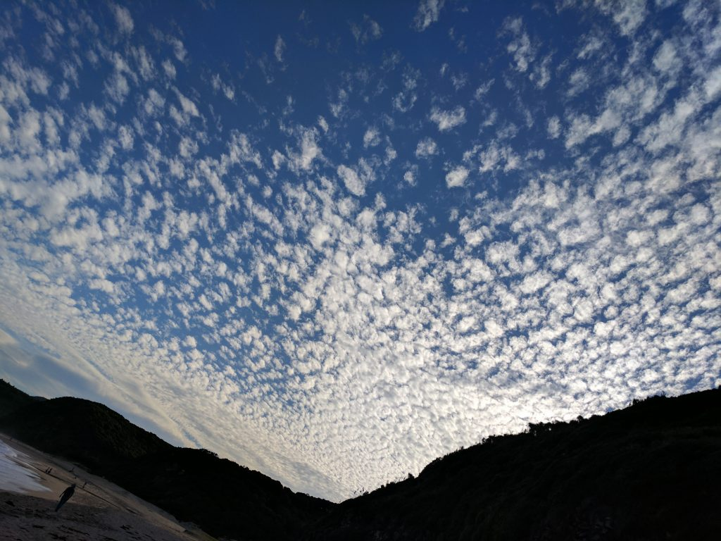 Royal National Park sky