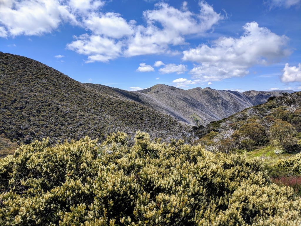 Mt Feathertop via Bungalow Spur, Alpine NP
