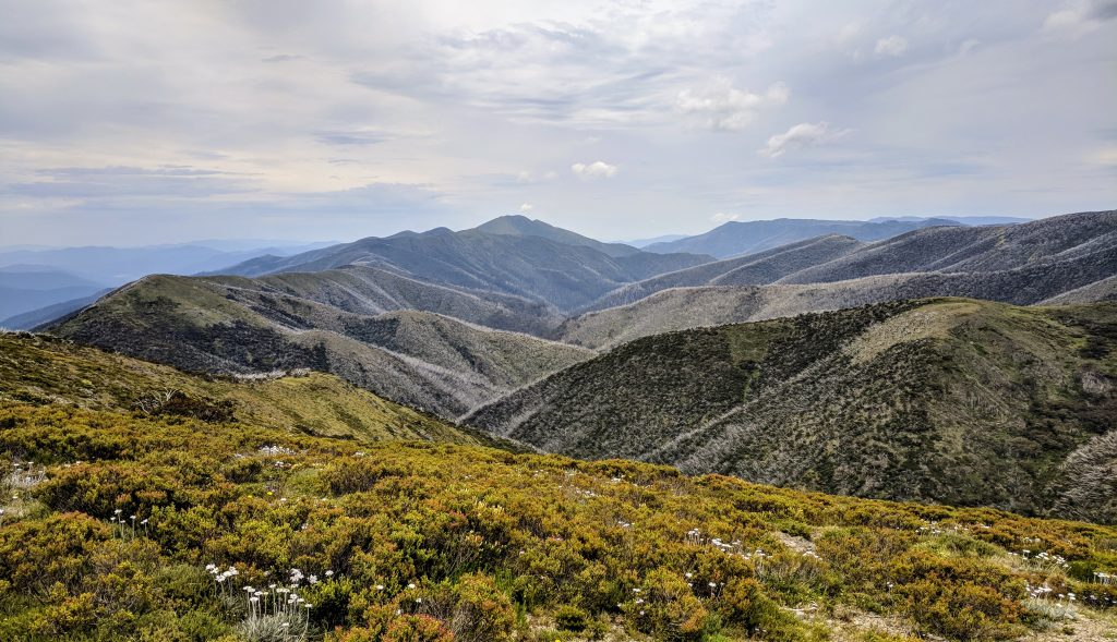 View from the highest point on the Great Alpine Road.