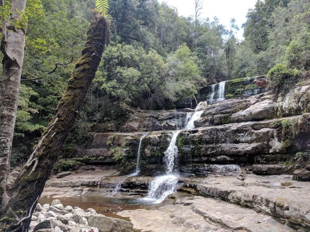 Liffey Falls Track, Liffey Falls State Reserve
