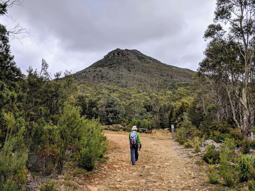 Collinsvale Peaks Track, Wellington Park