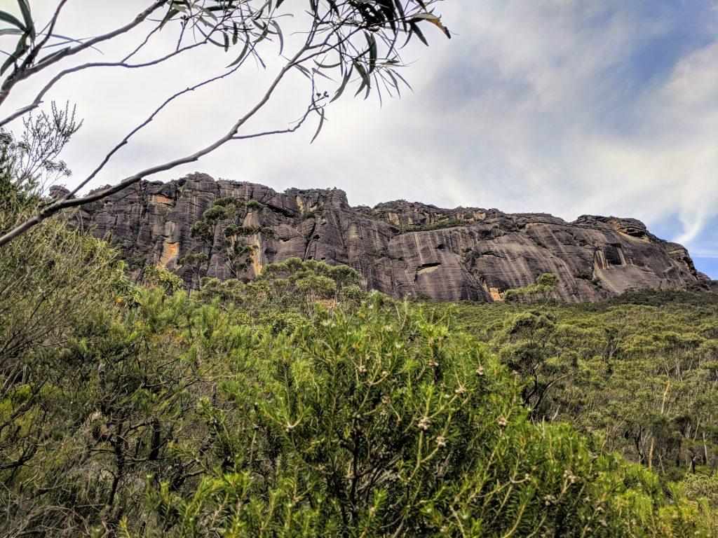 The Castle Track, Morton NP