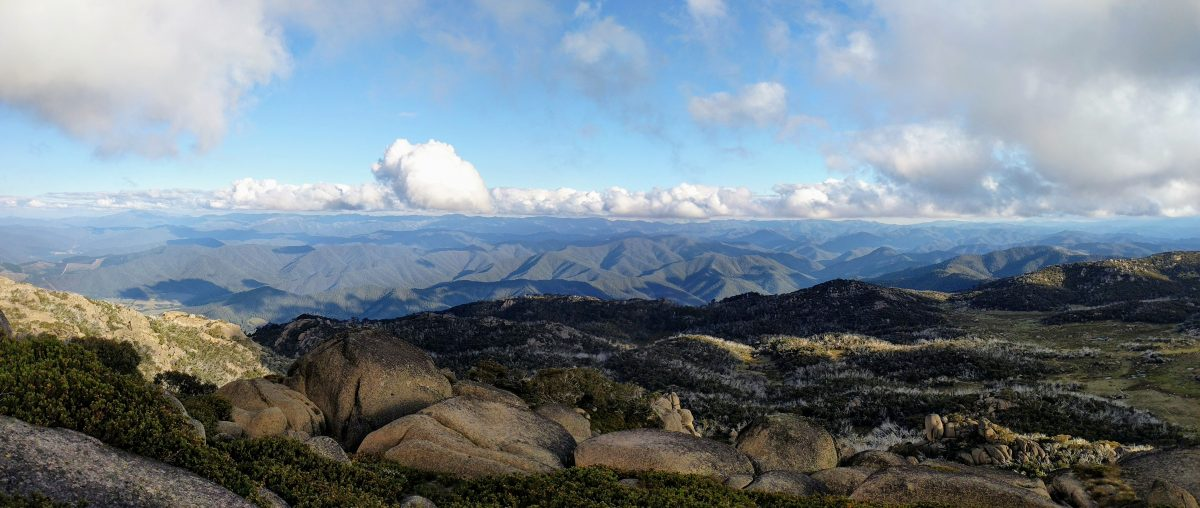 6 Great Bushwalks in Victoria, Australia