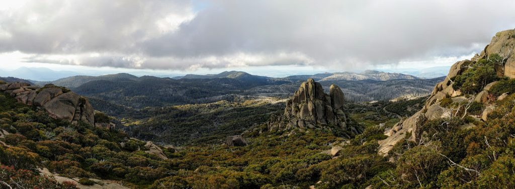The Hump Track, Mt Buffalo NP