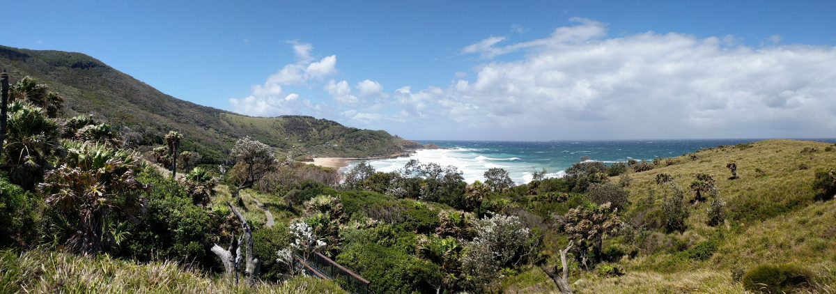 Sydney's Royal National Park: 6 Of The Best Day-Walks