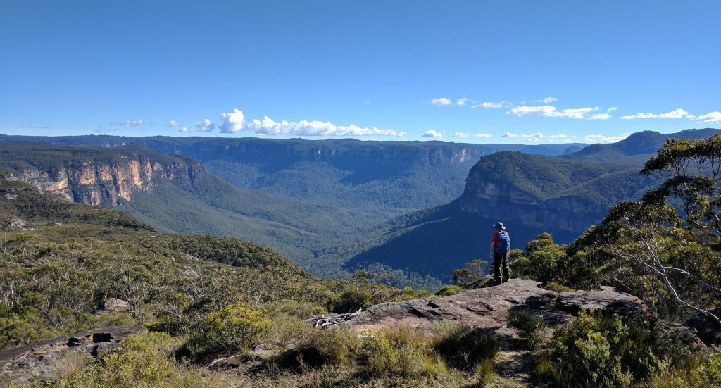 Mt Hay Track, Blue Mountains