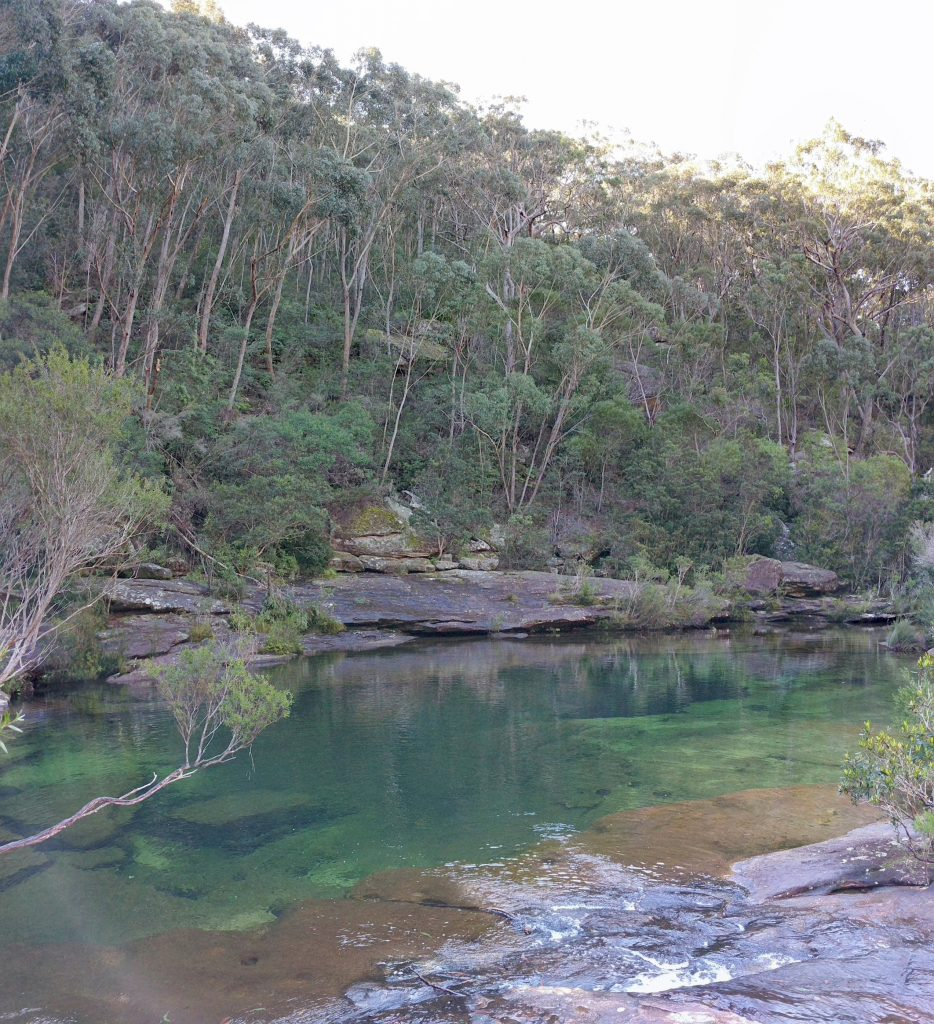 Heathcote to Waterfall and back, Heathcote NP and the RNP