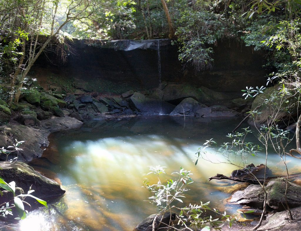 Three Creeks - Martins Lookout Circuit, Blue Mountains