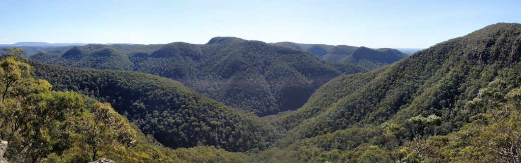 Shaws Ridge - Grose Mountain Circuit, Blue Mountains NP