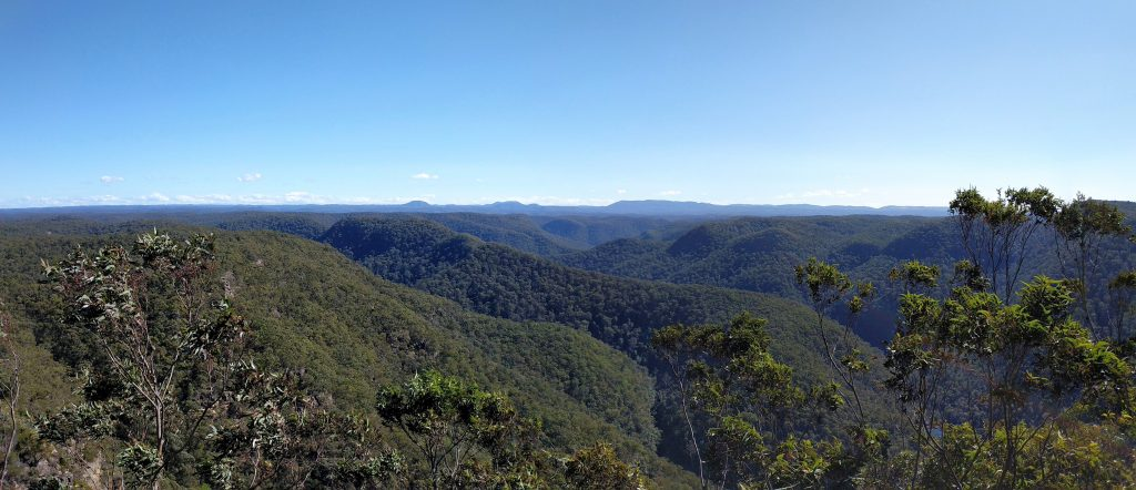 Shaws Ridge - Grose Mountain Circuit, Blue Mountains NP