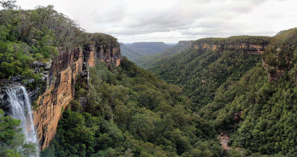 West Rim Track, Fitzroy Falls, Morton NP, NSW