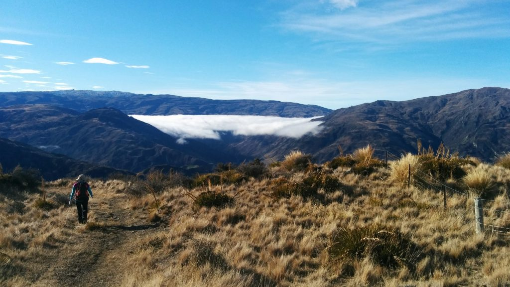 Mt Rosa Track, Central Otago NZ