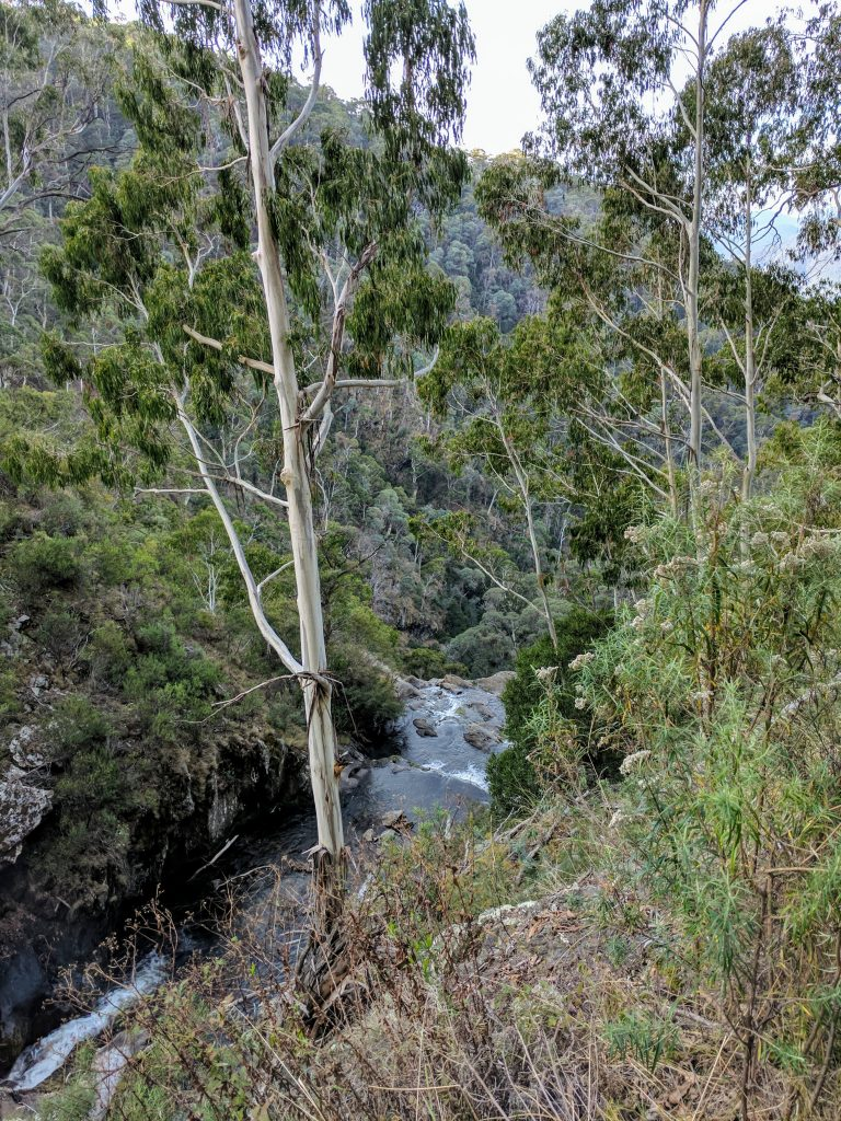 Buddong Falls Track, Kosciuszko NP