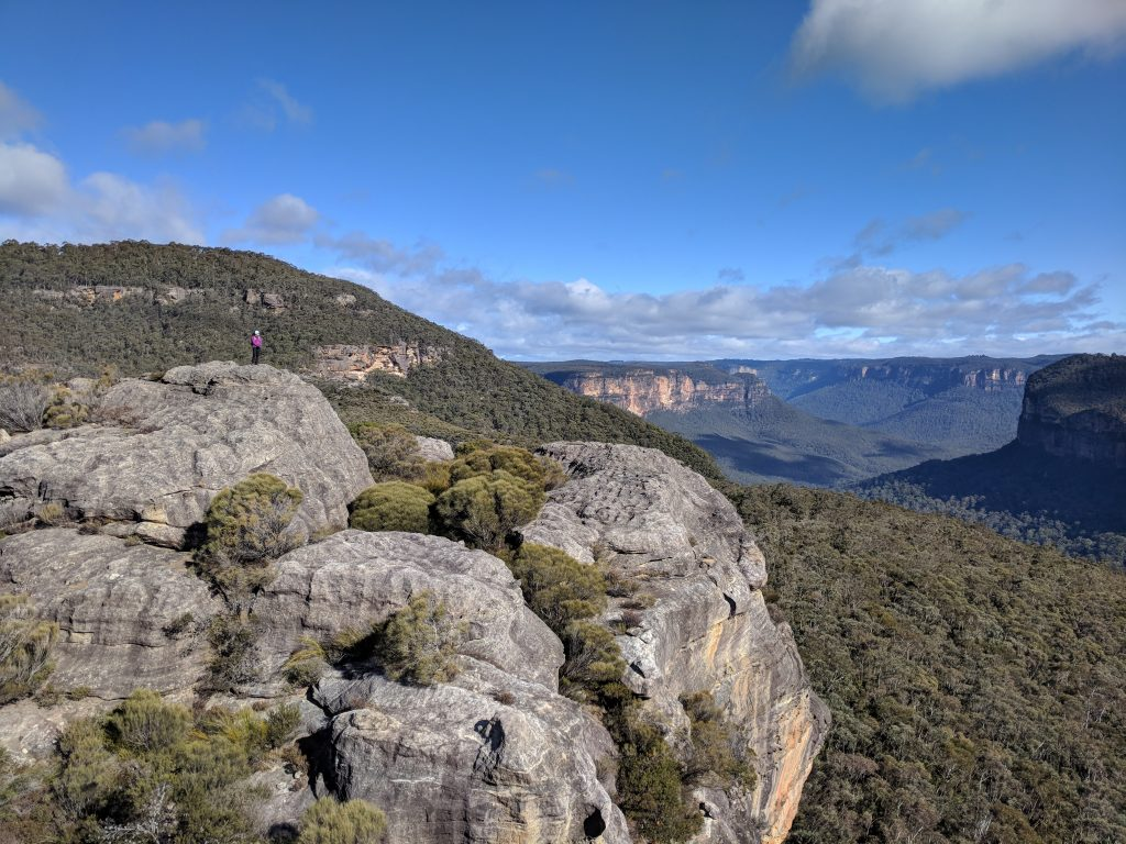 Venus Tor via Mt Hay, Blue Mountains
