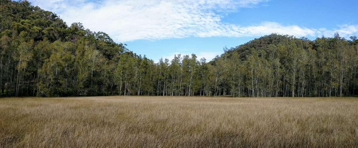 Mt Kuringai to Berowra via Benowie Track, Berowra Valley NP Sydney