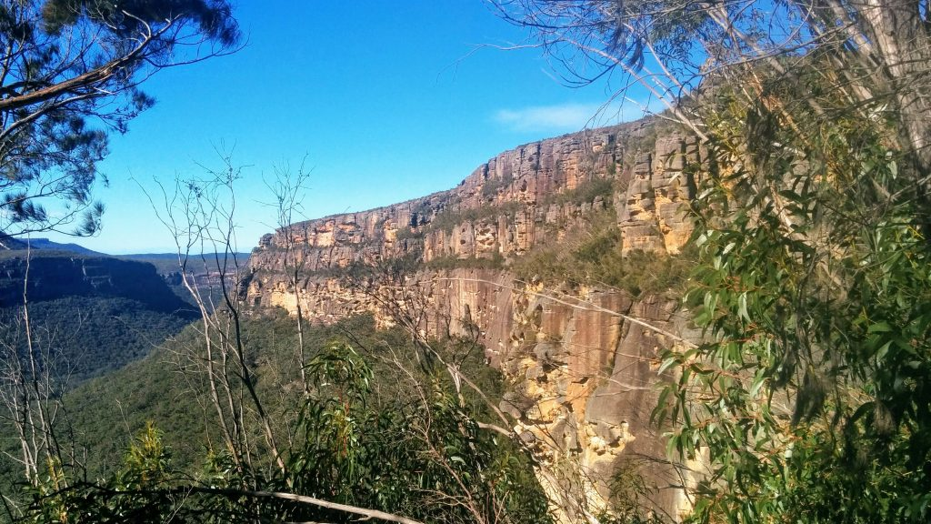 Byangee Walls Track, Morton National Park