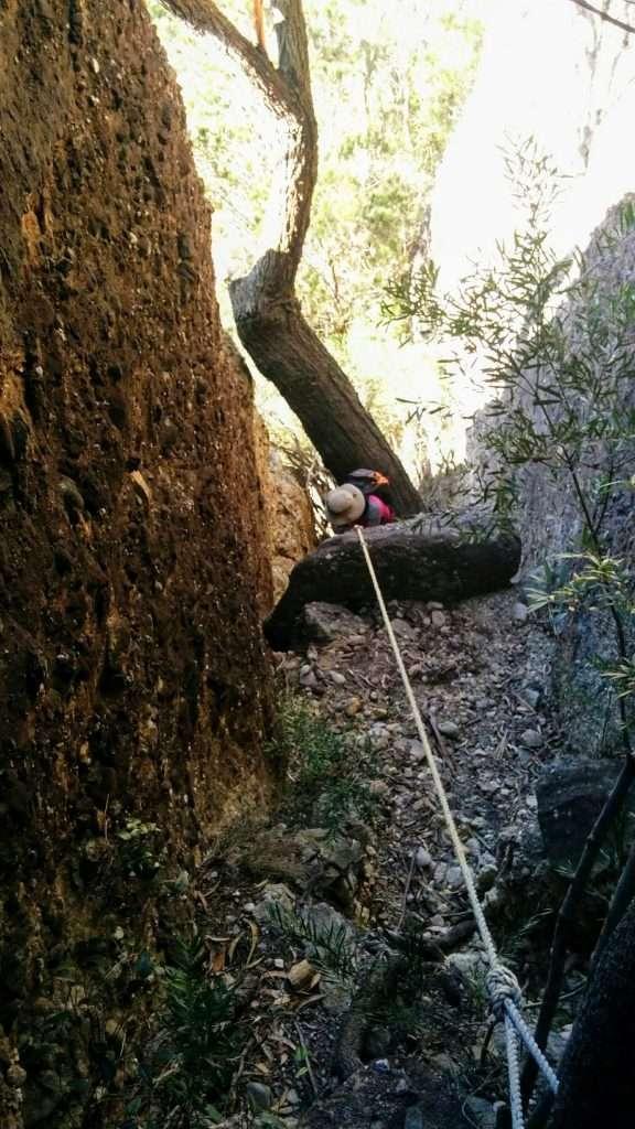 Byangee Walls Track, Morton National Park