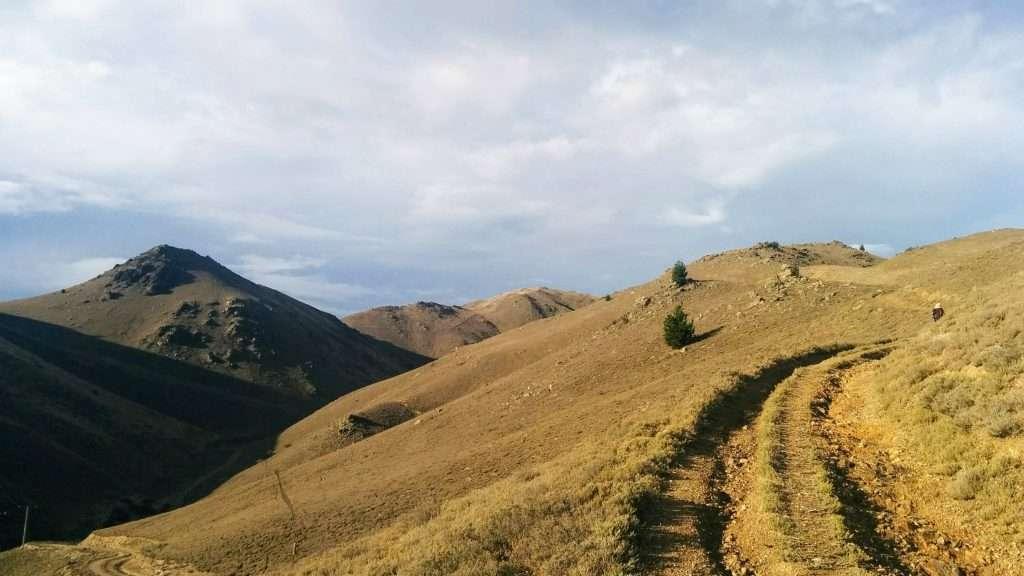 Cairnmuir Hill Track