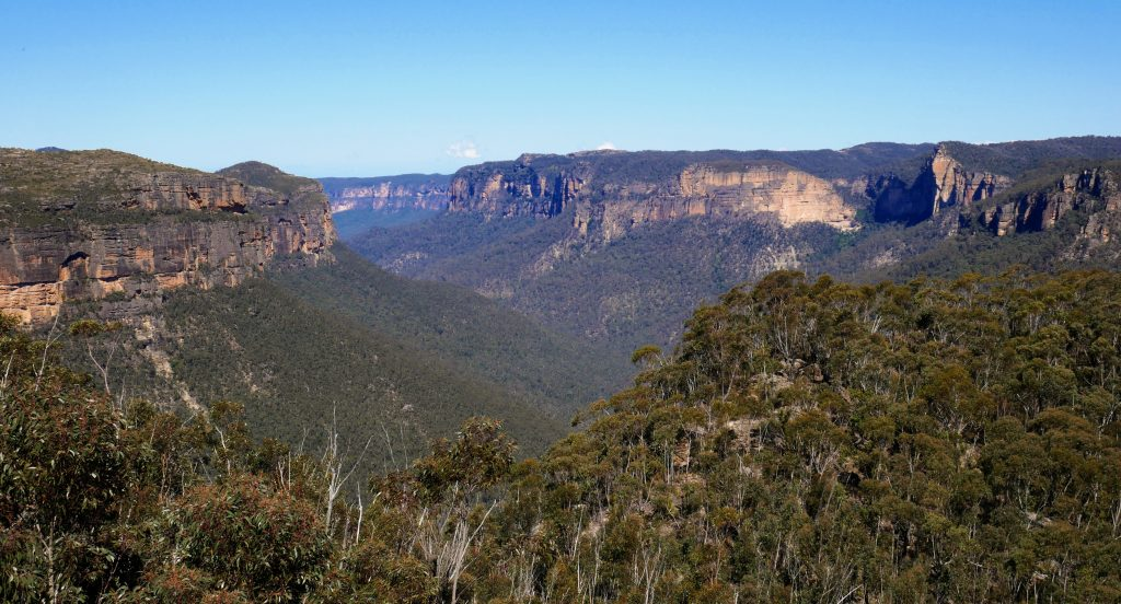 Asgard Swamp & Thor Head Track, Blue Mountains