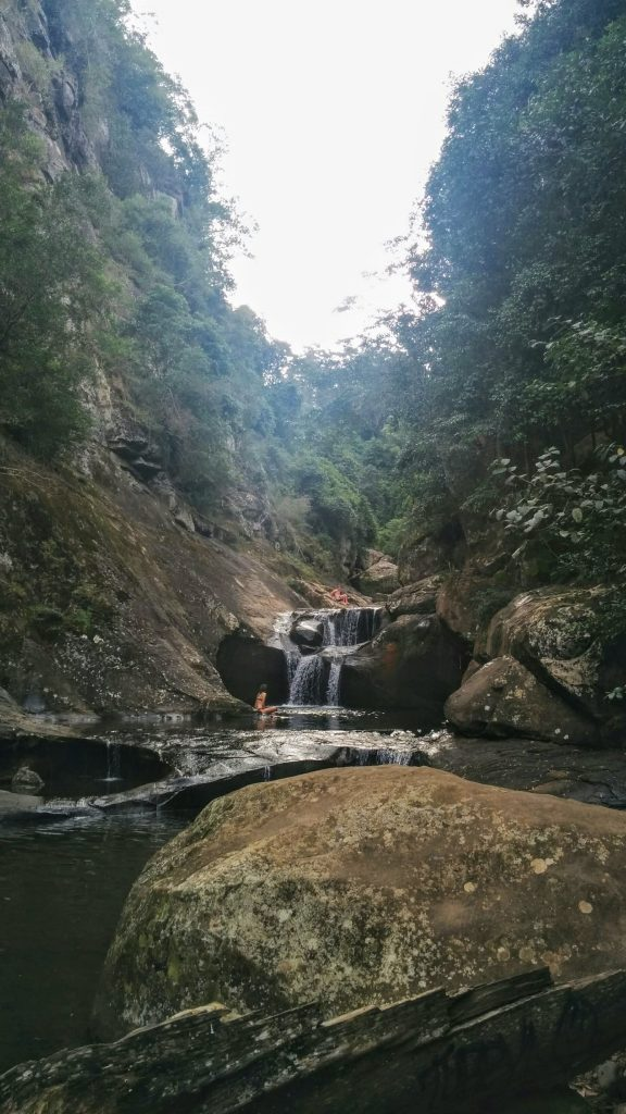 Macquarie Rivulet & Cascades Walks, Macquarie Pass NP