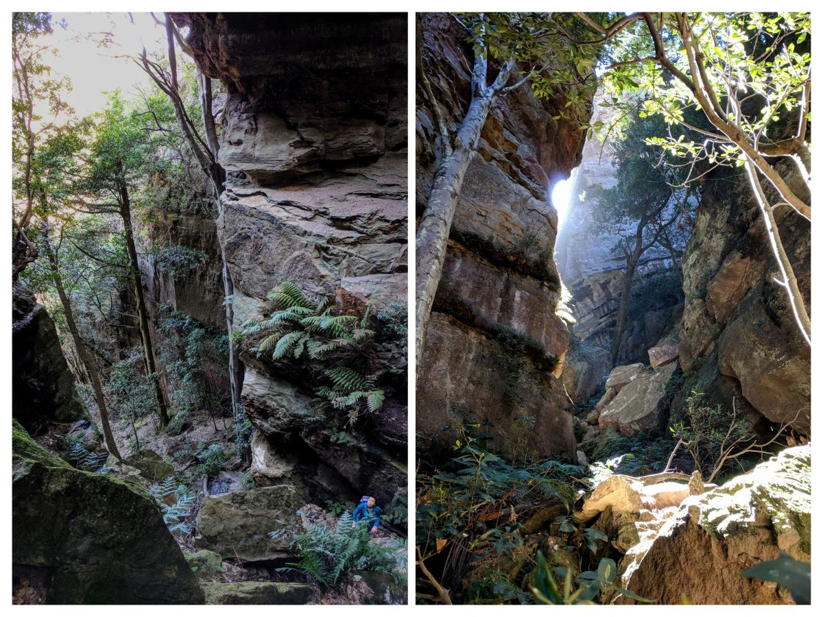 Devils Hole Track, Katoomba, Blue Mountains NSW