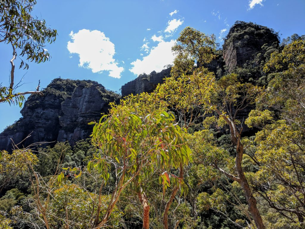Devils Hole Track, Katoomba, Blue Mountains