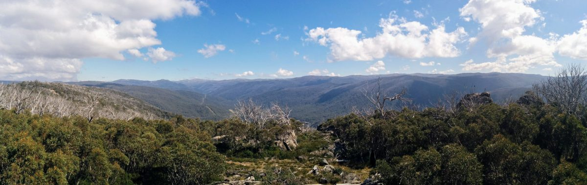 Rennex Walking Track, Kosciuszko National Park NSW