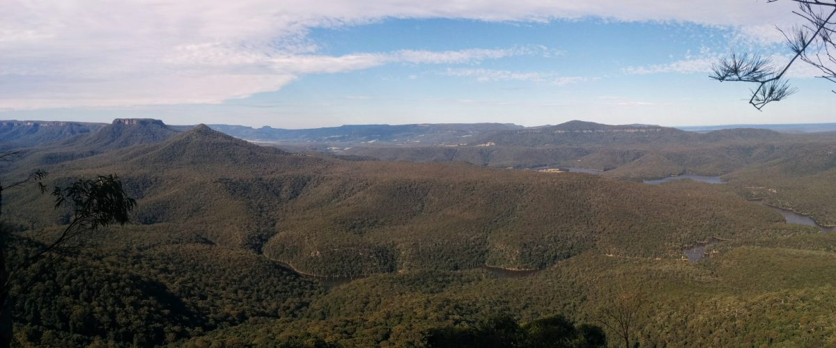 Wombat Hill Lookout Track, Morton National Park NSW