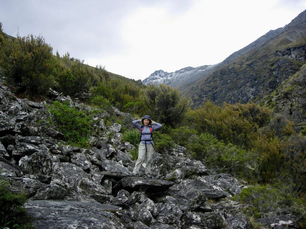 Lower Wye Creek Track, Remarkables Conservation Area