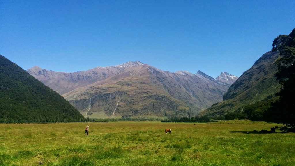 Cameron Flat to Glacier Burn, East Matukituki Valley