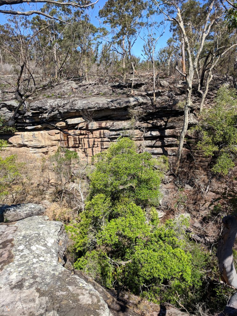 Bomaderry Creek Circuit, Bomaderry NSW
