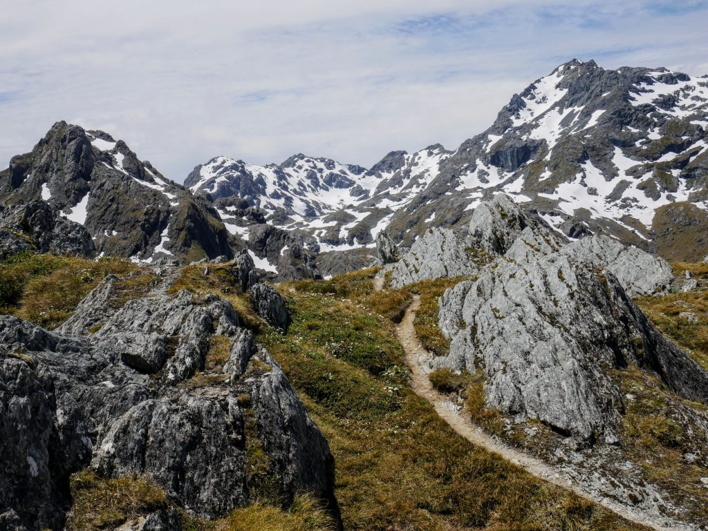 Routeburn Track NZ: Routeburn Flats to Harris Saddle and Conical Hill