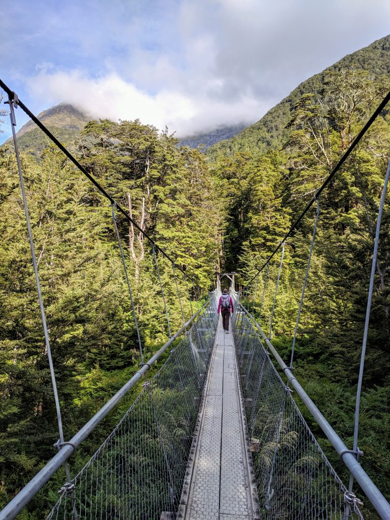 Routeburn Track to Routeburn Flats, Mt Aspiring National Park NZ