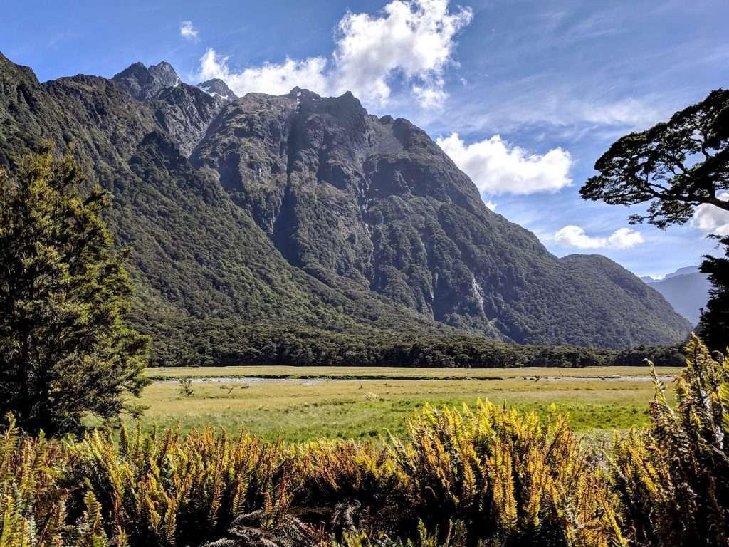 Routeburn Track to Routeburn Flats, Mt Aspiring National Park NZ