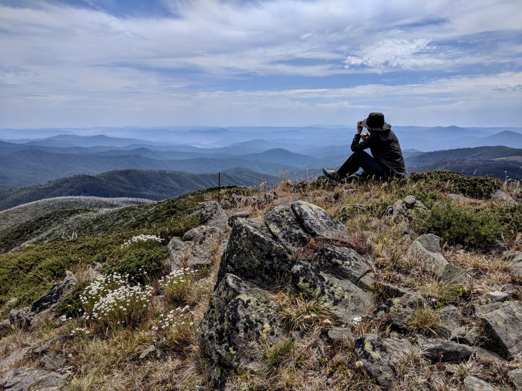 Mt Bogong ascent, Victoria