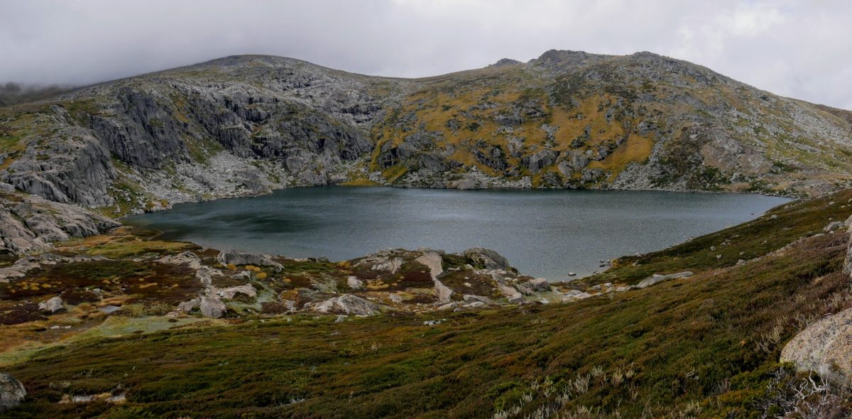 Mt Twynam, Little Twynam, Blue Lake & Hedley Tarn, Kosciuszko National Park NSW