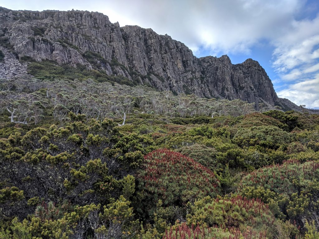 Meander Falls Split Rock Circuit, Tasmania