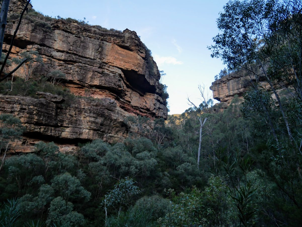 Grand Canyon Circuit, Blue Mountains NSW