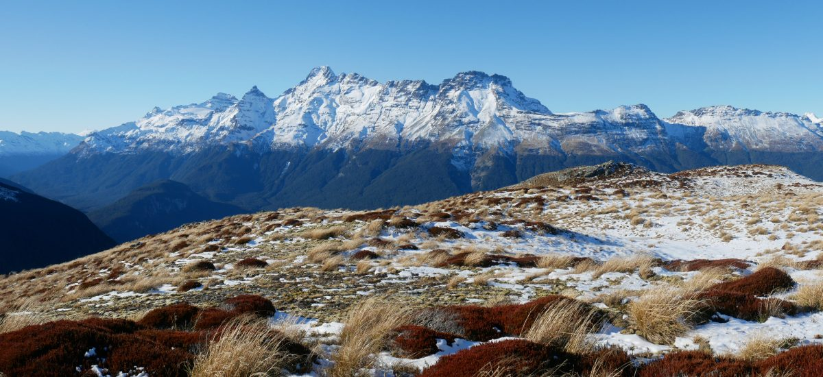 Sugarloaf Pass to pt. 1290m, Mt Aspiring National Park NZ