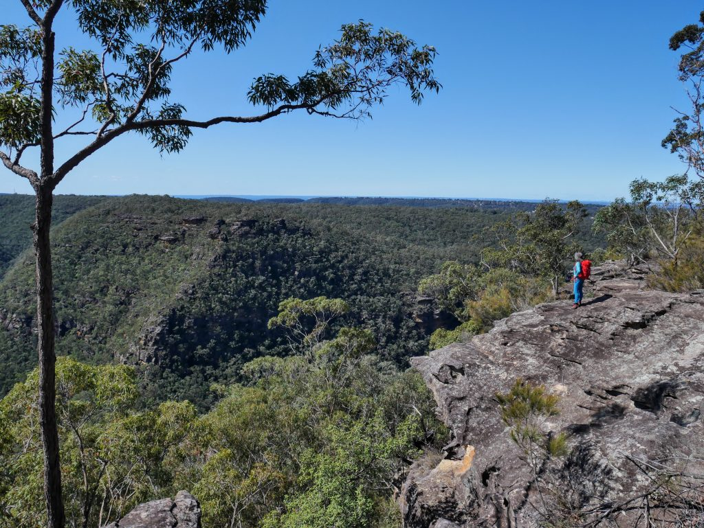 Martins Lookout to Lost World Lookout, Springwood, Blue Mountains NSW