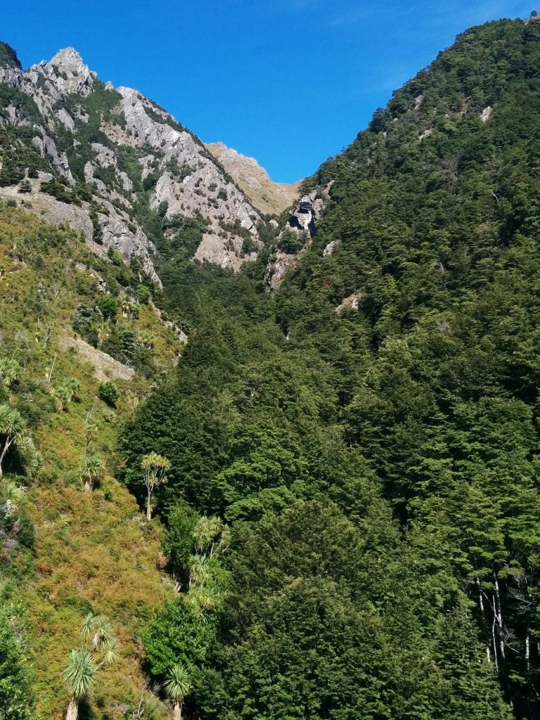 Isthmus Peak Track, Otago NZ