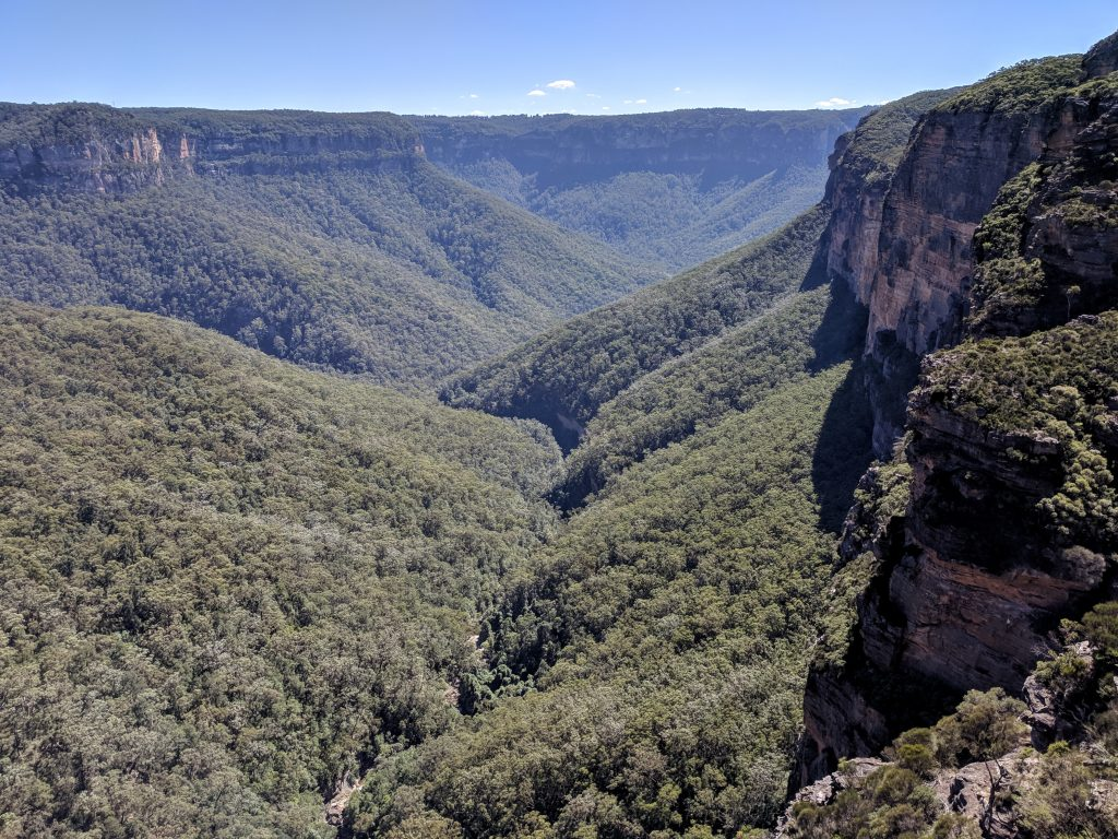 Fortress Ridge Track, Blue Mountains