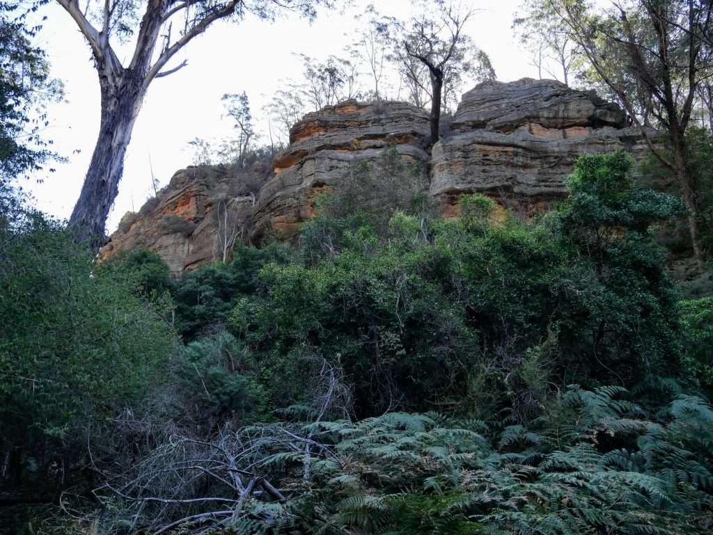 Ferntree Gully Reserve, near Rylstone NSW