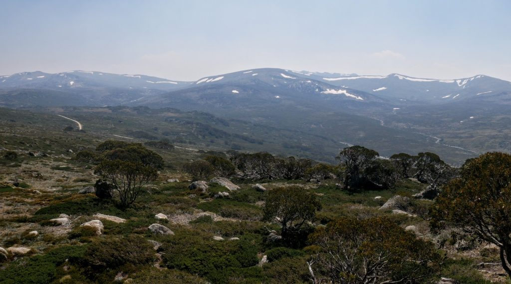 Mt Stilwell Track, Kosciuszko National Park NSW