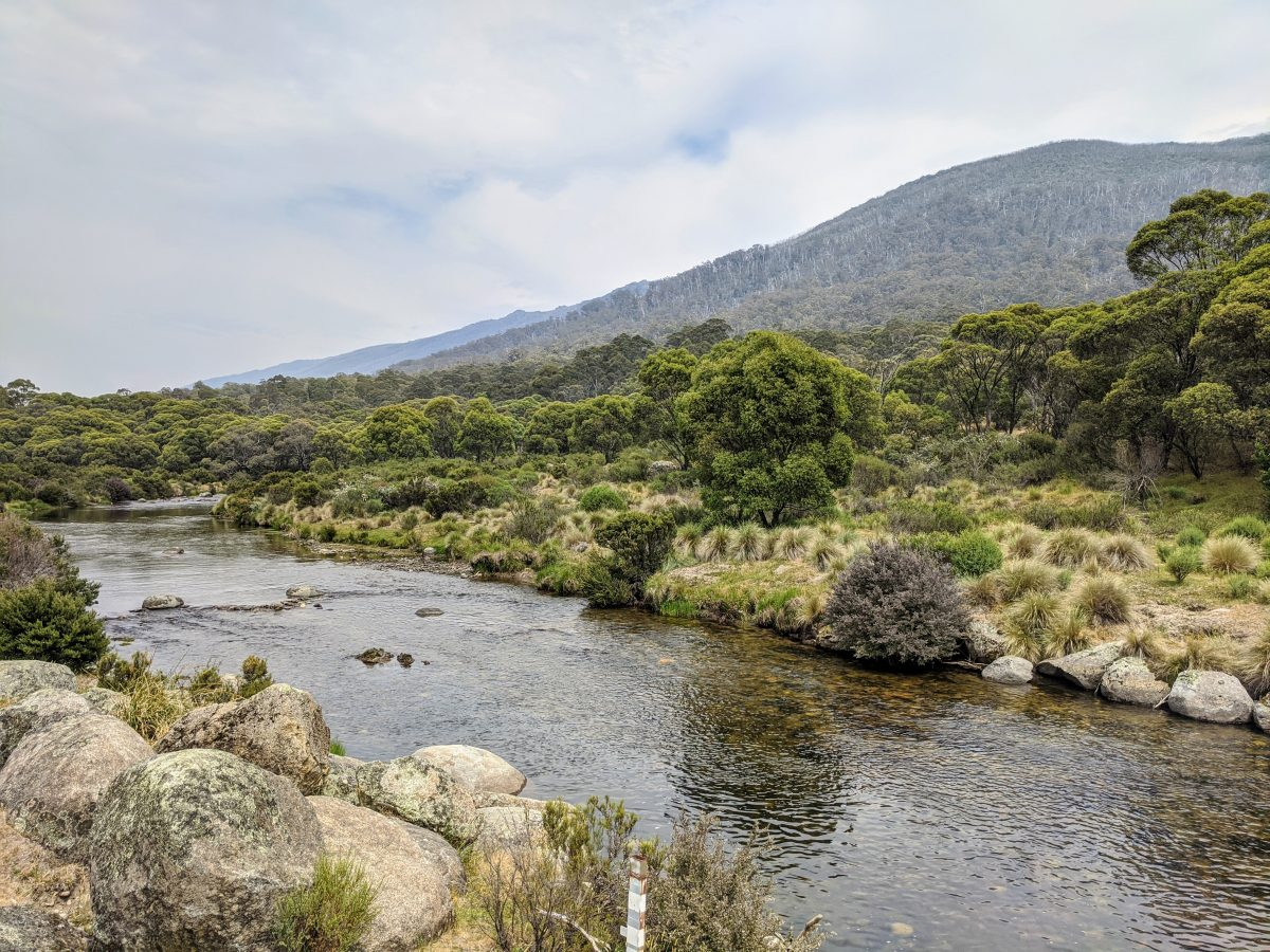 Bullocks Flat Circuit, Kosciuszko National Park NSW