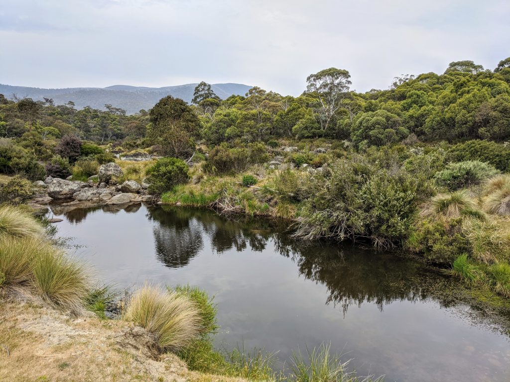 Bullocks Flat Circuit, Kosciuszko National Park